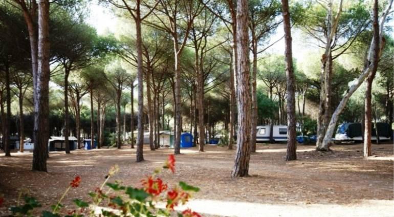Campsite offers 2021