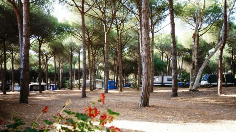 Offerte camping 2019