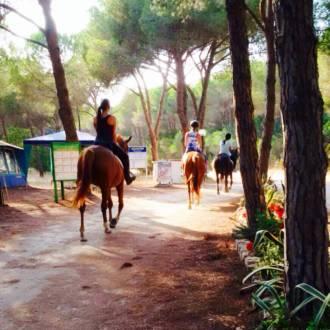 escursione cavallo 6