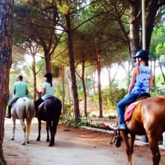 escursione cavallo5