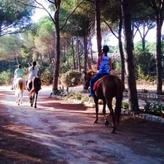 escursioni cavallo